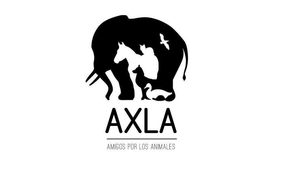 Nails Factory colabora con Axla